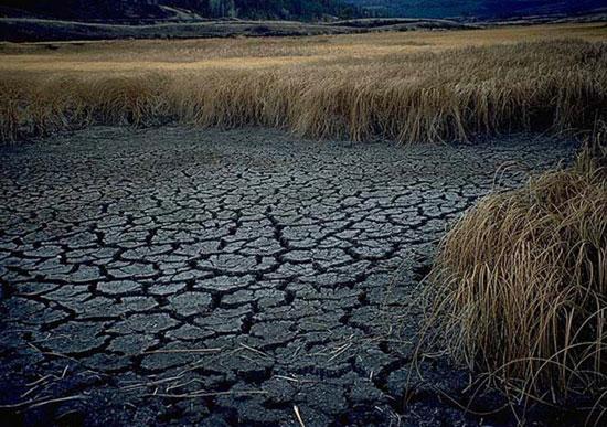 http://www.axesandalleys.com/Index/aa015/drought.jpg