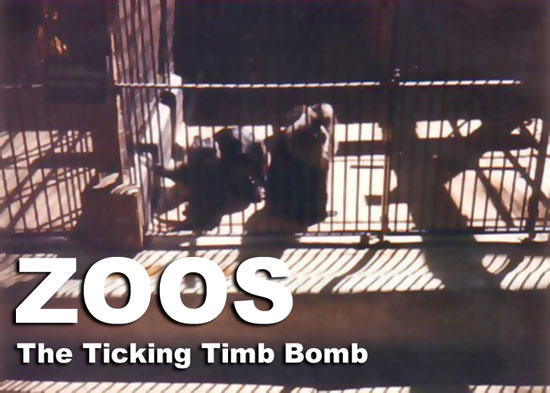 Zoos The Ticking Time Bomb